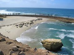 La Jolla Sets Crisis in the Cove Hearing on Seal Problems http://ift.tt/2iyyLzx