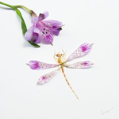 """Dragonfly. Made of petals of a purple Peruvian lily. Today, I met the awe inspiring artist Chng Seok Tin, one of Singapore's most versatile artists.…"""