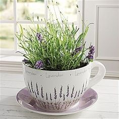 Teacup Planter - Lavender Design