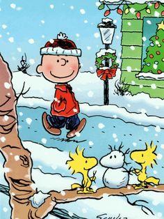 Peanuts Christmas, Christmas Cartoons, Charlie Brown Christmas, Noel Christmas, Christmas Animals, Christmas Quotes, Vintage Christmas Cards, Christmas Humor, Xmas