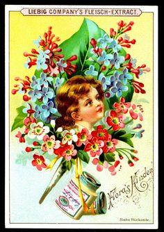 """Liebig Beef Extract  """"Flower Children""""  German issue 1895."""