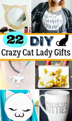 '22 DIY Crazy Cat Lady Gifts : Homemade Gifts for Cat Lovers...!' (via Mom Foodie)