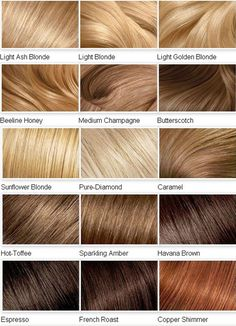 Shades of Blonde Hair Dye Chart