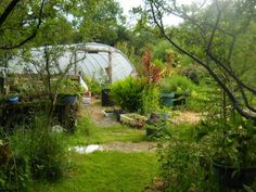 Tunnel at Bealtaine Cottage Gardens