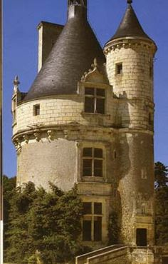Google Image Result for http://www.castles.org/castles/Europe/Western_Europe/France/Chenonceau/chenon.jpg