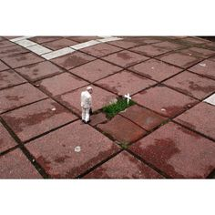 Miniature sculpture by Issac Cordal