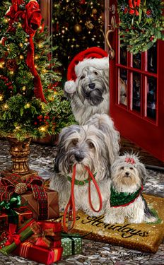 """New for 2013! Havanese Christmas Holiday Cards are 8 1/2"""" x 5 1/2"""" and come in packages of 12 cards. One design per package. All designs include envelopes, your personal message, and choice of greeting. Select the inside greeting of your choice from the menu below.Add your custom personal message to the Comments box during checkout."""