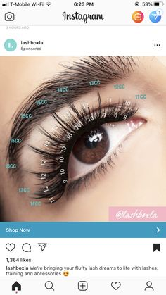 Close up of a volume fan being applied to a natural lash. Notice how how there too much glue ? Thousand Lashes Training Makeup tips long lashes Applying Eye Makeup, Eye Makeup Tips, Whispy Lashes, Eyelash Extensions Salons, Eyelash Sets, Best Lashes, Longer Eyelashes, Natural Lashes, False Lashes