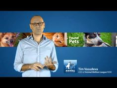 Found Pets CEO Appeal