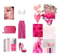 """""""🎀Pink pink pink 💗"""" by annamariaper on Polyvore featuring Zimmermann and Christian Dior"""