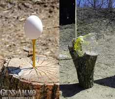 homemade shooting targets | Subscribe Now! Outdoor Shooting Range, Shooting Bench, Shooting Guns, Shooting Sports, Game Shooting, Shooting Practice, Crossbow Targets, Archery Targets, Rifle Targets