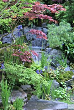 Japanese waterfall garden. RHS Chelsea Flower Show 2015. The Highlights. | http://www.grubbylittlefaces.com