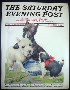 1926 cover:   black & wheaten Scottish Terriers with ferocious kitten...