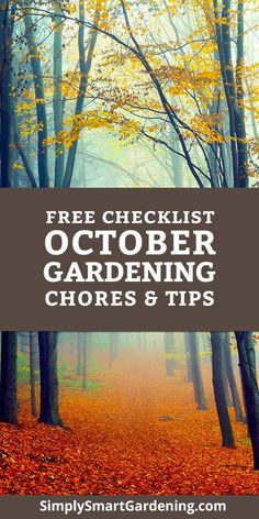 Monthly Gardening Checklists (main) Not sure what yard & garden chores you need to do in this month? Vegetable Garden For Beginners, Gardening For Beginners, Gardening Tips, Garden Types, Gemüseanbau In Kübeln, Fall Clean Up, Container Gardening Vegetables, Vegetable Gardening, Garden Care
