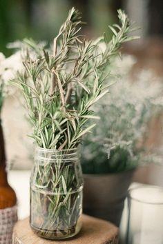 Para enfeitar a casa Uma dica para ter vasos bem fornidos, com plantas que durem um tiquinho a mais que flores sensíveis como rosas, por exemplo, é escolher  maços de ervas ou folhagens para deixar a casa linda e perfumada. Alecrim, lavanda, arruda e eucalipto estão na minha lista de favoritos de sempre. O alecrim é uma maravilha. Tem aquele perfume característico que, imeditamente, nos remete ao clima de uma casa no campo em uma tarde ensolarada e fresca.