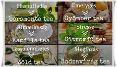 MENTŐÖTLET - kreáció, újrahasznosítás: egészség Tea, Teas