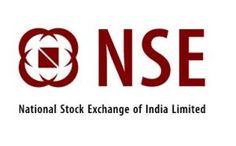 NSE IPO Detail