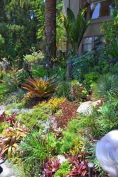 The Outlaw Gardener: The Ann Nichols Garden -- stunningly beautiful sub-tropical garden in San Francisco