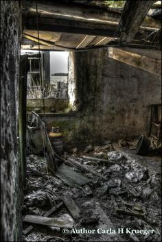 I photographed this alone one evening, my feet snapping delicate twigs. Eerie place. Heart in my mouth. #derelict
