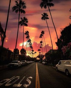 Beautiful Sunset from Hollywood Boulevard Los Angeles travel traveling travelphotography travelgram sunset sunsets hollywood losangeles usa Sky Aesthetic, Travel Aesthetic, Purple Aesthetic, Hollywood Boulevard, Pretty Sky, Sunset Wallpaper, California Dreamin', California Palm Trees, Venice Beach California