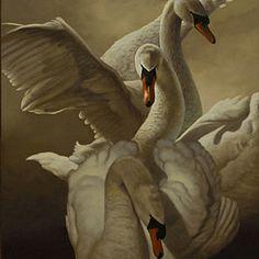 Born in 1951 in Miami, Florida, William Wolk began drawing free-hand charcoal portraits at age eight. Beautiful Swan, Beautiful Birds, Cygnus Olor, Swan Painting, Swan Lake Ballet, Mute Swan, Art Themes, Wildlife Art, Bird Prints