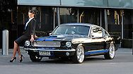 Search Results for 'Rally Blue ' | Joel Strickland Ford Mustang Fastback, Rally, Base, Search, Searching