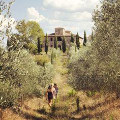 "benwhitedesign: "" Lovely walk up the beautiful old villa ruin before the girls sadly headed home. #benlucywed #farnetella #siena #sinalunga #italy #italia #travel (at Farnetella) """