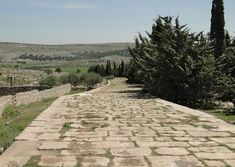 Ancient Roman road connecting the towns of Antioch and Chalcis, near the modern site of Tall Aqibrin in Syria. Ancient Rome, Ancient History, Sabbath School Lesson, Roman Roads, Road Construction, European History, Ancient Civilizations, Roman Empire, Innovation