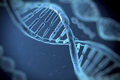 Microsoft armazena informação em ADN