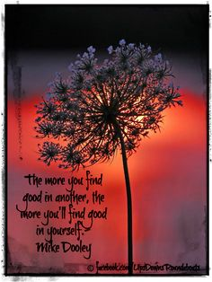 The more you find good in another, the more you'll find good in yourself.- Mike Dooley