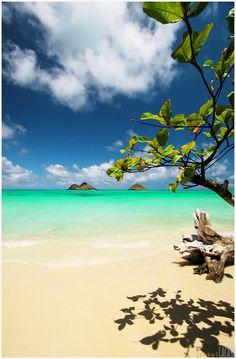 Hawaii Lanikai Beach, Oahu. Great colors!