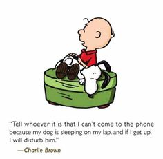 Charlie Brown - Tell whoever it is that I can't come to the phone  because my dog is sleeping on my lap, and if I get up I will disturb him.