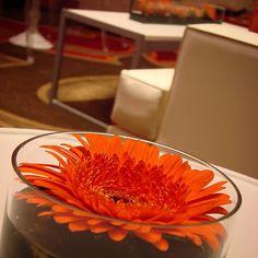 #c2mdesigns #floral #florist #floraldesign #centerpiece #cocktail #gerber #perfectfit #ocd #simplicity #modern #lounge #minimalist #orange #event #corporateevent #omniprovidence #designsthatrock #rhodeisland #boston  Designer: #christinemccaffery