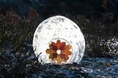 Maple Ice globe Andy Goldsworthy, Ice Sculptures, Art Sites, Land Art, Art Blog, Snow Globes, Abstract, Nature, Sun