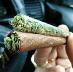 PUF_CF#DAPSTARS#highmerica #medicinalmarijuana #OIL #maryjane #cannabis…