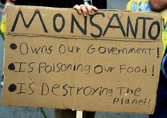 This is a sign from the October 2013 March Against Monsanto in DC. March Against Monsanto #MAM May 24th. NEED SIGN IDEAS.  WE'VE COLLECTED A LOT OF THEM FOR YOU.  PLEASE SHARE THIS: http://www.pinterest.com/smarthealthtalk/gmo-signs/