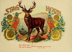 vintage cigar labels | stock-graphics-vintage-cigar-box-labels-0029 | Viintage Stock Graphics
