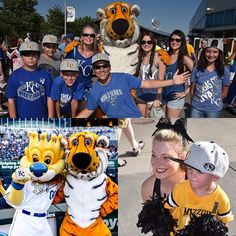 Welcome to #MizzouNight! 🐯#ForeverRoyal #Royals