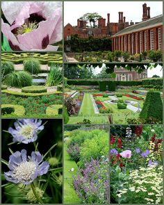 Hampton Court Palace, gardens by Kotomicreations, via Flickr