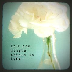 the simple things in life - Google Search