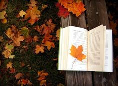 Read in nature