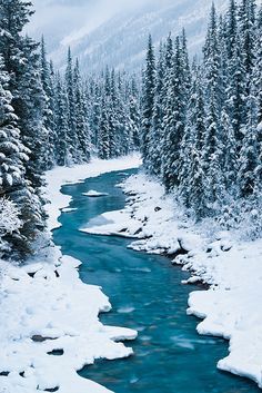 The blue glacial water in the North Saskatchewan River, Banff National Park, Alberta, Canada