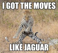 Moves like Jaguar ;)
