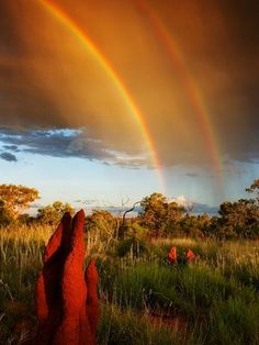 Australian Double Rainbow  Double arcs happen when light is reflected more than once in an atmospheric water droplet.