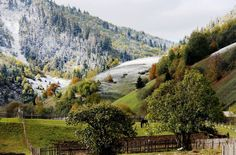 Meadow in Carpathians Dream Images, Country Roads, Mountains, World, Nature, Travel, Naturaleza, Viajes, Destinations