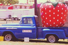 Poteet is renowned for its Strawberry Festival that occurs every April
