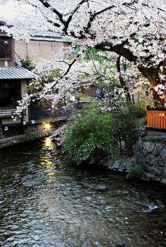 Kyoto stream