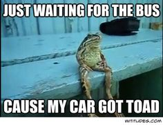 #funny #puns #compartirvideos #funnyvideos