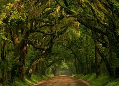 Southern country roads.