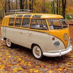 Volkswagen Transporter, Volkswagen Bus, Vw T1 Camper, Volkswagen Beetles, Kombi Hippie, Combi Ww, Combi Split, Vw Beach, Volkswagen Minibus